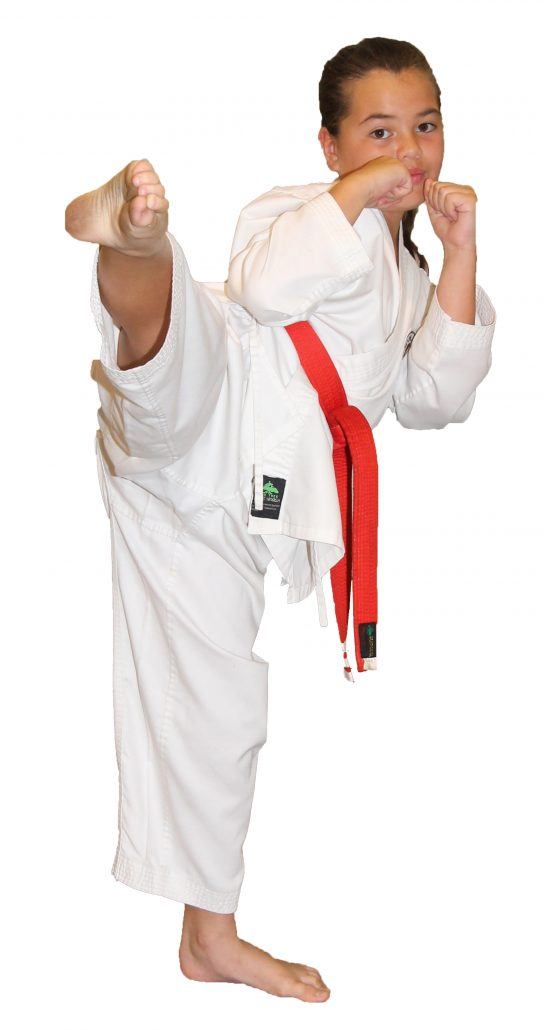 Red belt round house kick